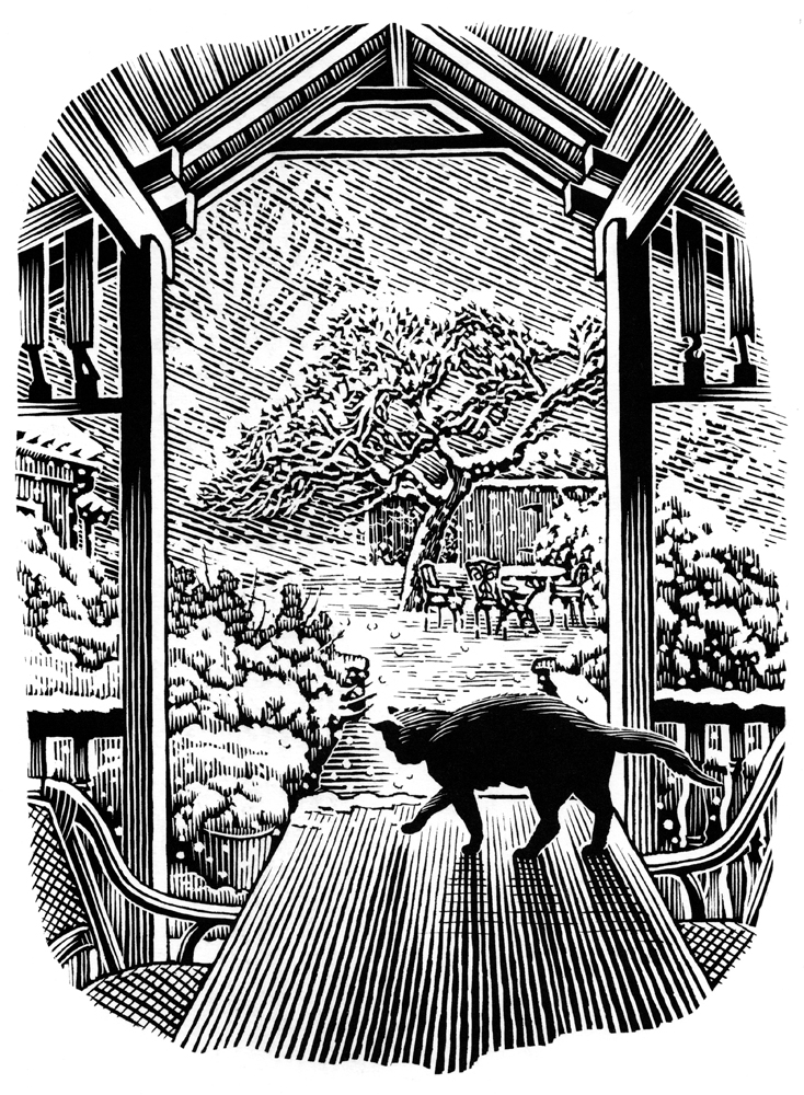 Richard Solomon - bill-sanderson-128-cat-in-the-snow