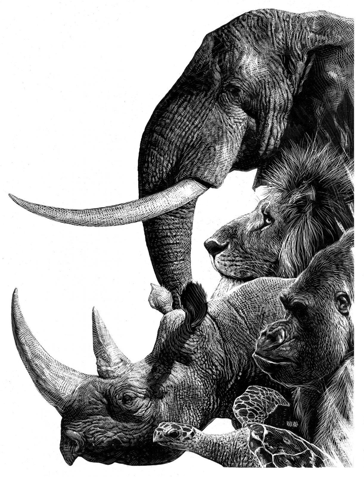 Richard Solomon - Ricardo-Martinez-239-Animales-en-peligro