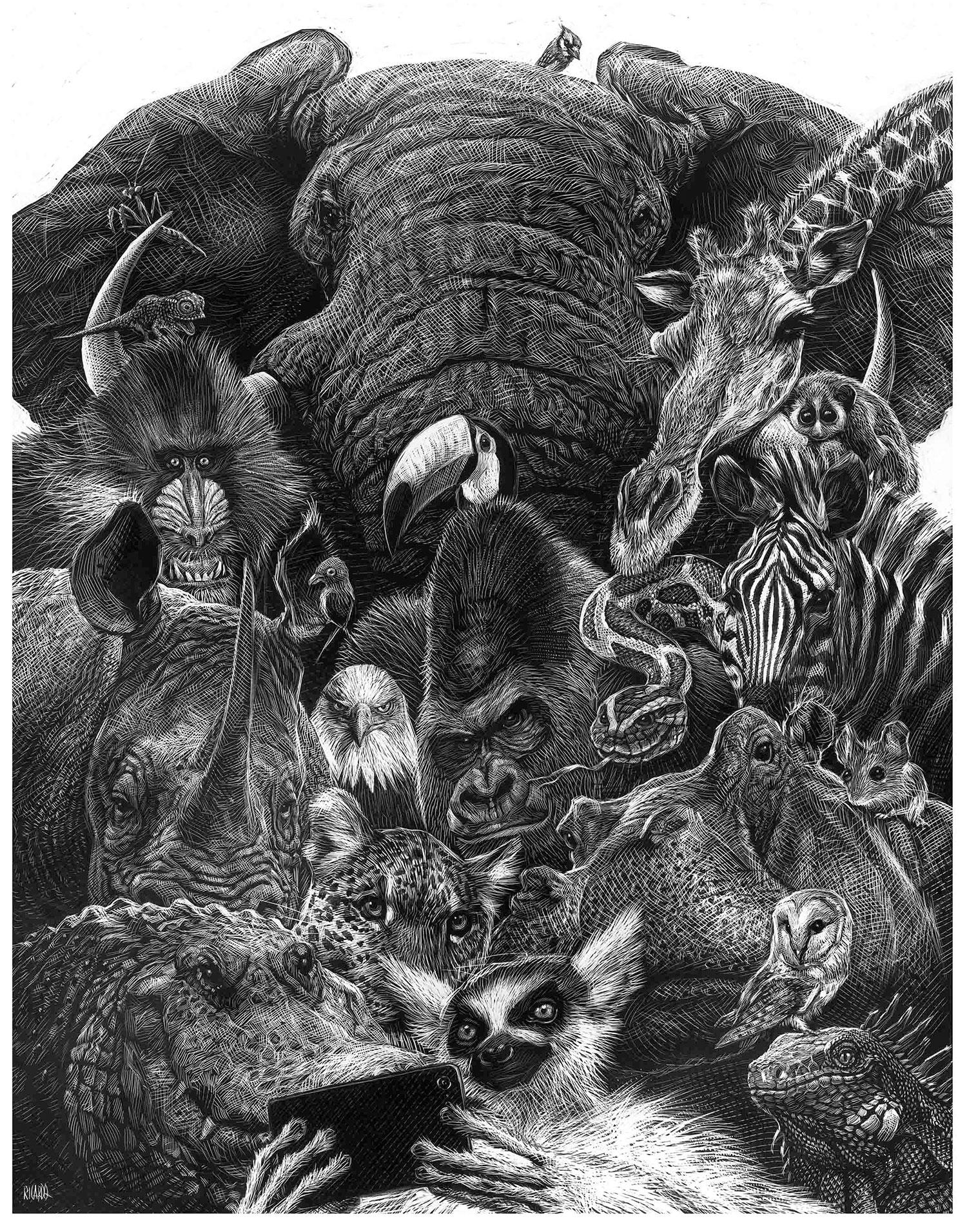 Richard Solomon - Ricardo-Martinez-266-Wildlife-Selfie-2