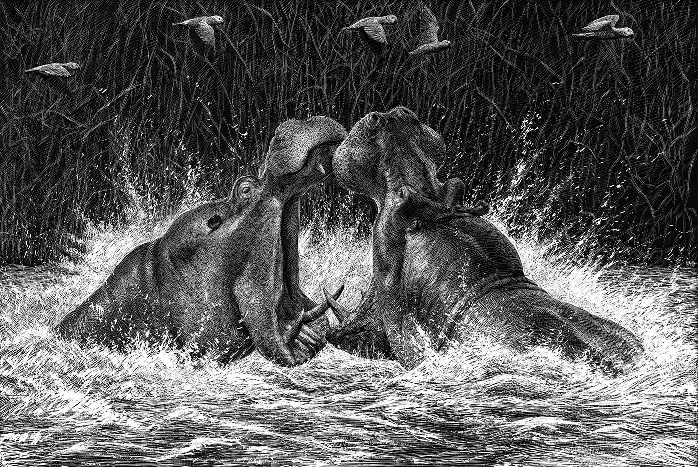 Richard Solomon - Ricardo-Martinez-277-Hipopotamos