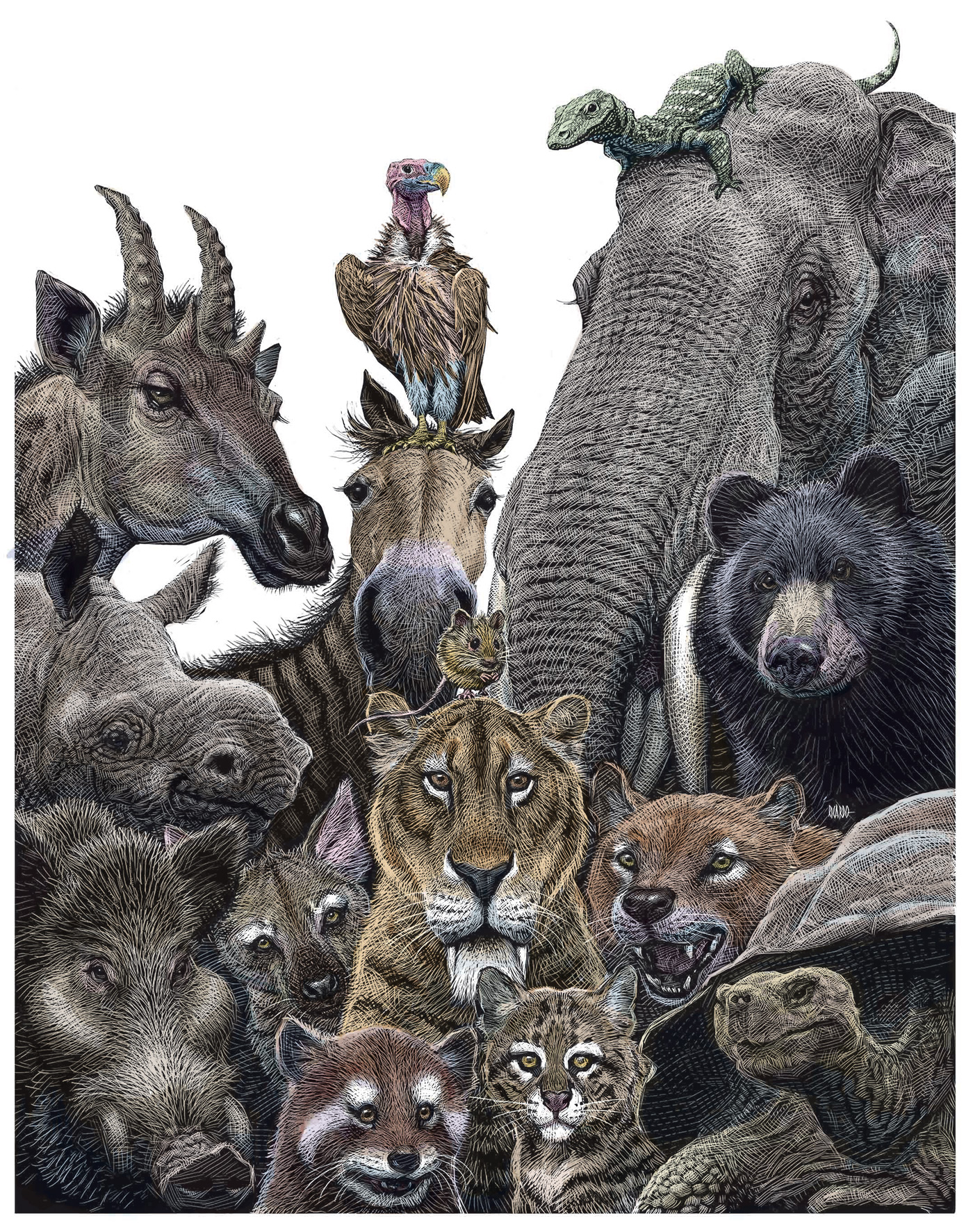 Richard Solomon - Ricardo-Martinez-324-Animales-prehistóricos-Madrid-color-copia