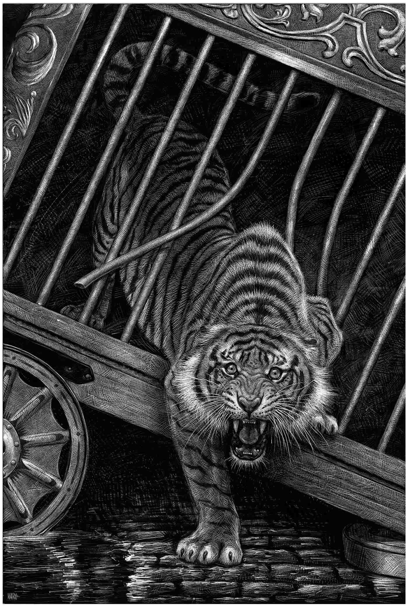 Richard Solomon - Ricardo-Martinez-348- A - Tigre jaula B&N copia