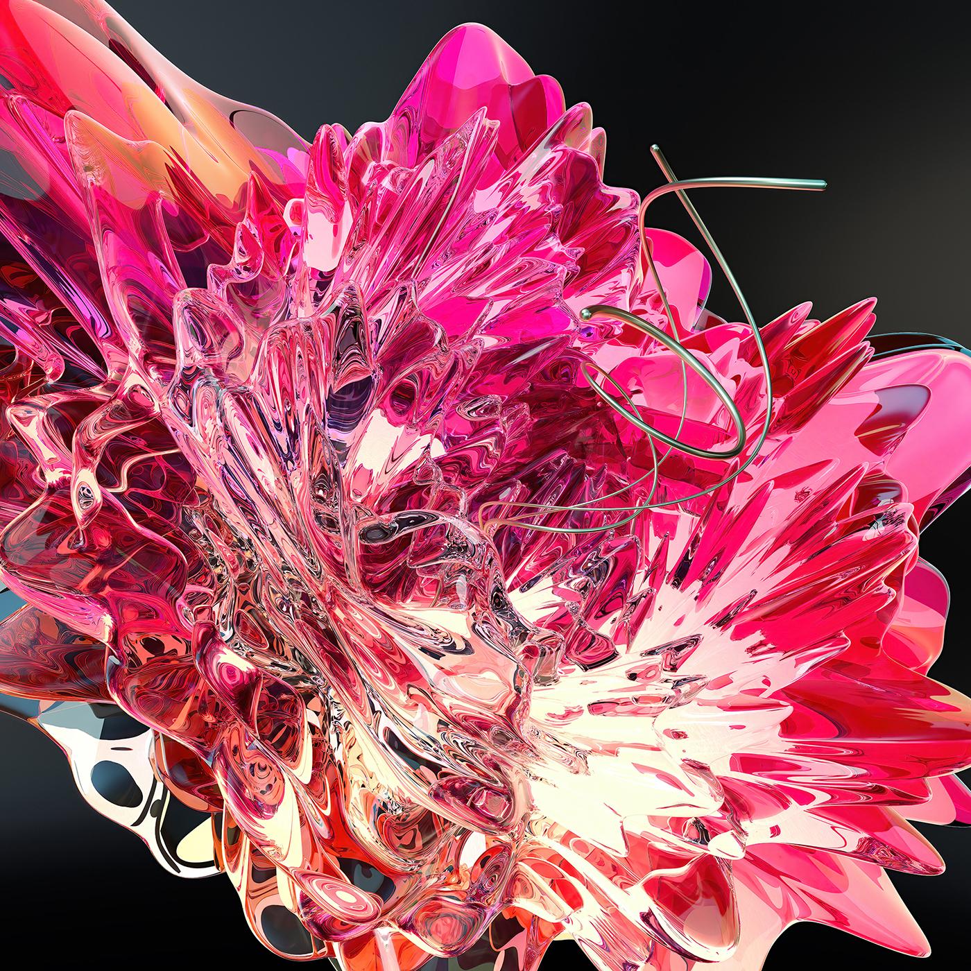 Richard Solomon - Coral_Flower_08