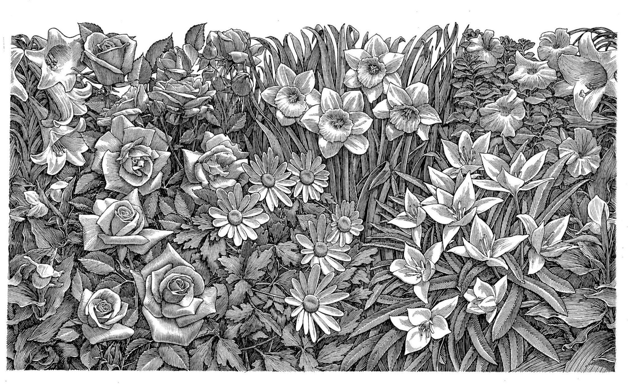 Richard Solomon - Flower Garden