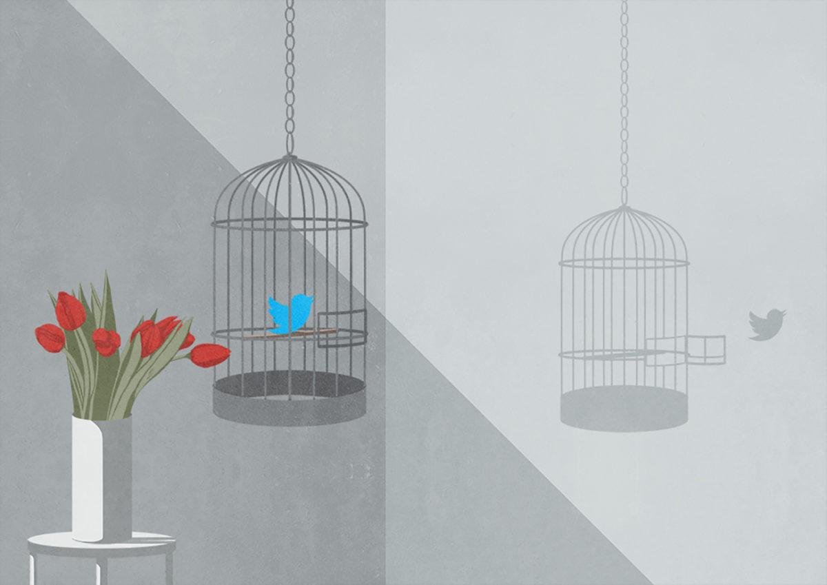 Richard Solomon - stefania-infante-009-censorship_of_socialnetworks