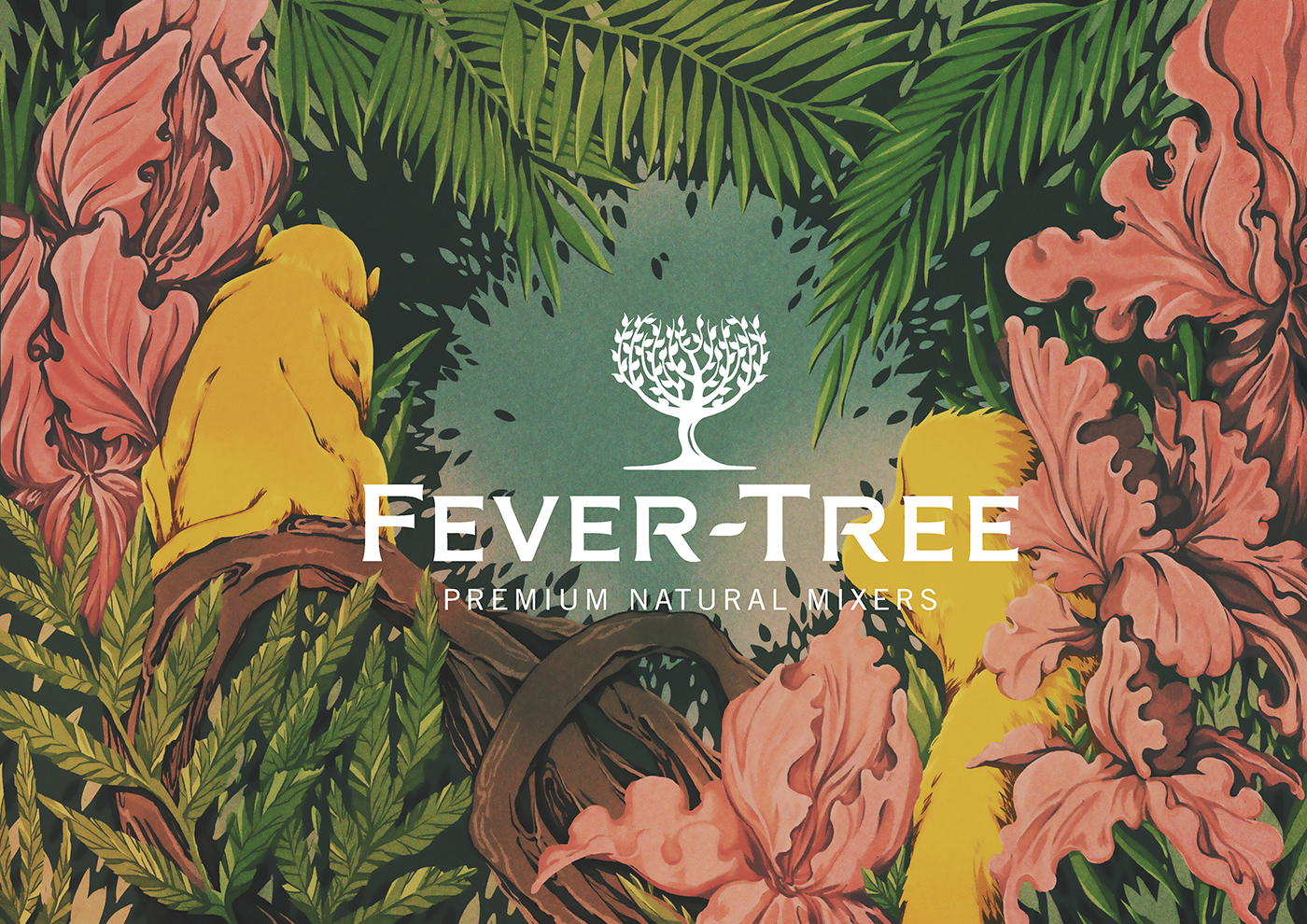 Richard Solomon - YCN - Fever-Tree Limited Package monkey - commercial - 2016